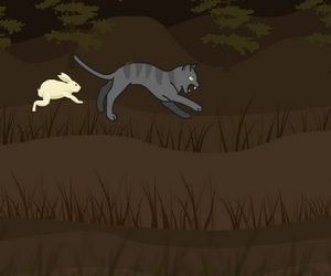 Le chat chasseur