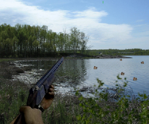 Chasse les canards!